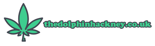 thedolphinhackney.co.uk